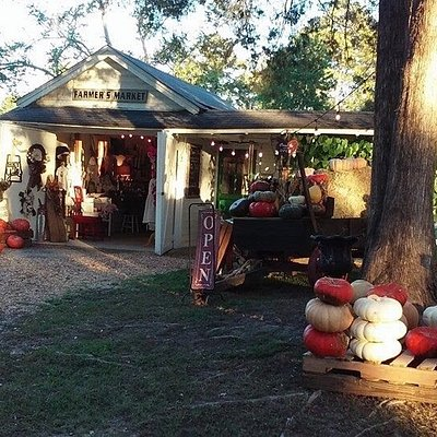 The Barefoot Belle is located in a 100 year old carriage house on U.S. Highway 31 South. 6 miles