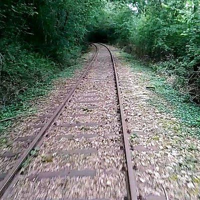 Velo-rail Des Andaines