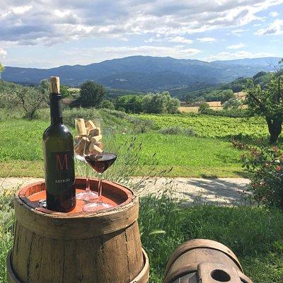 La Matteraia Agritorismo and wine tasting room