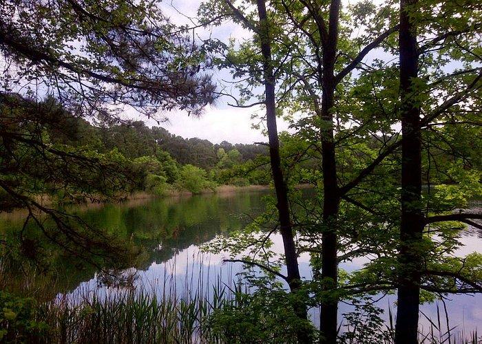 Lake Ballard - from the main path