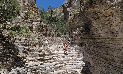 Devil's Hall Trail