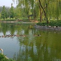 Parkside YuanJing