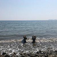 穏やかで静かなこじんまりした海岸