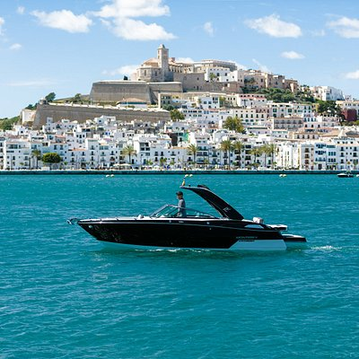 Motorboat. Monterey 278SS. 10 pax. Private Day Charter Ibiza (10h-19h). Book Now!