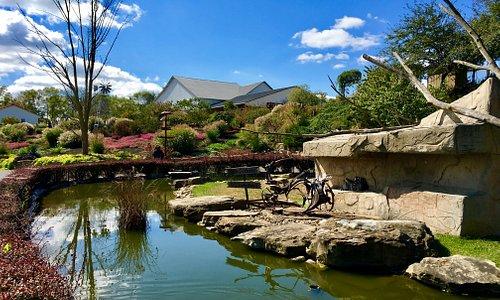 Pond and lemur island