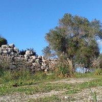 Magical Minorca Route