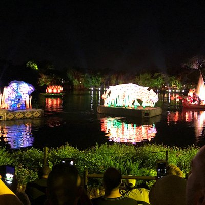 River of Light water show At Disney's Animal Kingdom