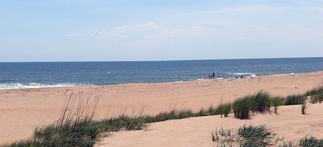 Virginia Beach 2021 Best Of Virginia Beach Va Tourism Tripadvisor Последние твиты от miss lexa (@misslexa_ph). virginia beach va tourism tripadvisor