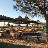 Nuovi tavoli e sedie per il bar I Giardini di Cala Brandinchi