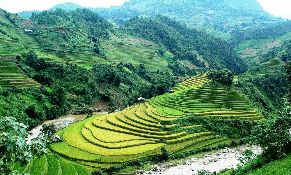 Rizieres en terrasses à Mu Cang Chai - Yen Bai - Viet Nam