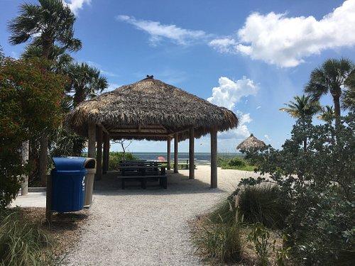 Picnic tables and shade