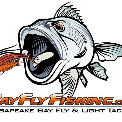 Bay Fly Fishing, LLC provides guided fly and light tackle fishing charters on the Chesapeake.