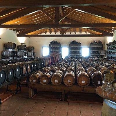 display of all those barrels