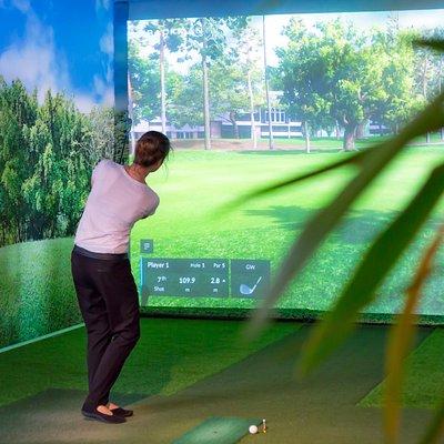 Virtual Golf Software, Foto by Vladimir Povedich