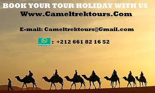Cameltrektours