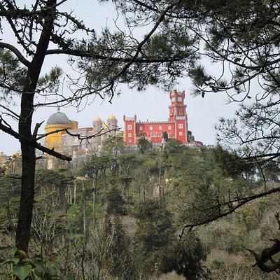 A vista do Palácio no caminho da Tapada