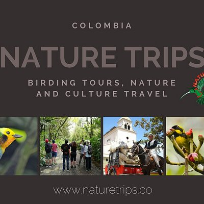 Birding tours, nature and culture travel
