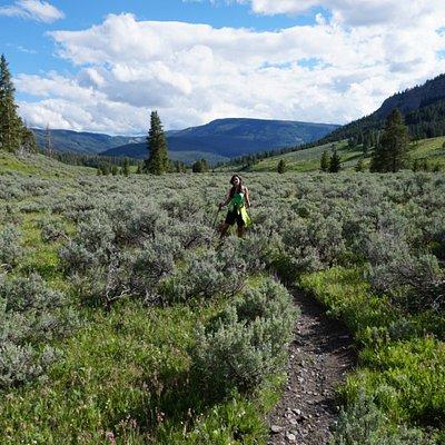 Daly Creek Trail