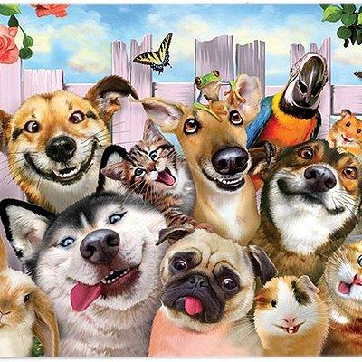Novelty Cat & Dog Plaques