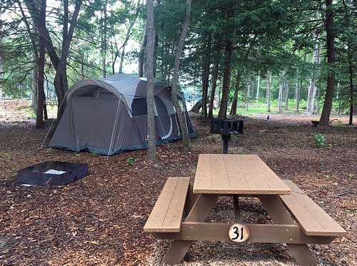 Old Mill Camp has 12 Primitive Tent Sites. Lots of Trees for Shade and Hammocking.