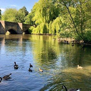 Beautiful Village, River and Bridge