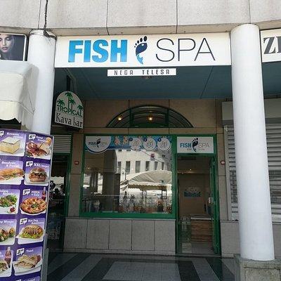 Fish Spa Bled