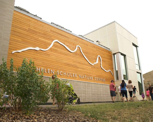 Bring the family for an afternoon of discovery at the Nature Centre!