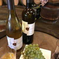 Van Ruiten Winery - the grapes and the wine!