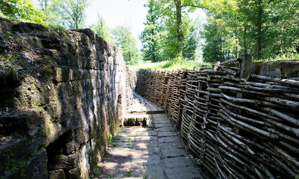 Trench system at Bayernwald