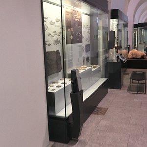 Paläontologisches Museum