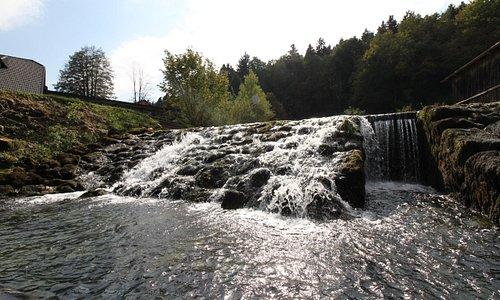 Our spring water Obrščica