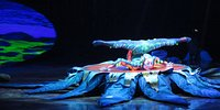Cirque Du SoleilCirque Du Soleil