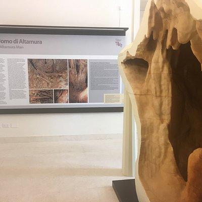 Riproduzione in scala 1:1 della porzione di grotta in cui si trova il fossile dell'Uomo di Altam