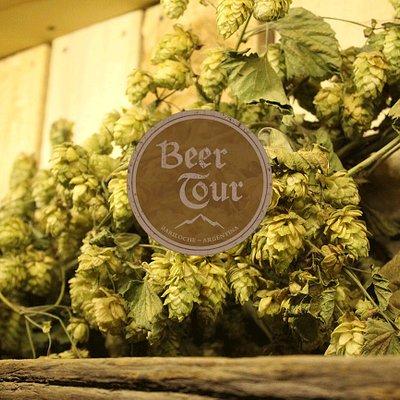 El lúpulo es el ingrediente principal de la cerveza artesanal.