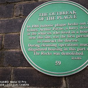 Info on the wall about th outbreak of the plague.