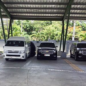 standard and vip transfers