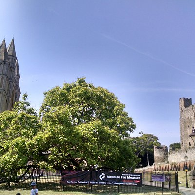 Rochester cathedral on left, with the largest Norman Era castle keep in England on the right.