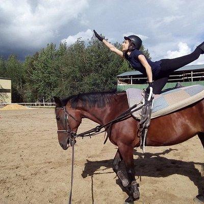 Гимнастика на лошади