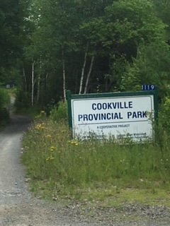 Sign at park, left of sign is the trail