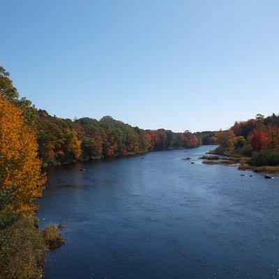 Le Have river