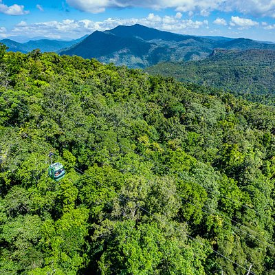 Skyrail Rainforest Cableway gondolas gliding across the rainforest
