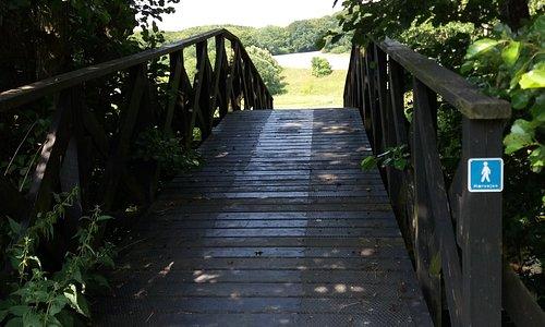 Picture of a bridge at Kongestien
