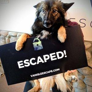 Escapee!