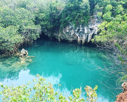The Blue Hole in Tom Moore's Jungle