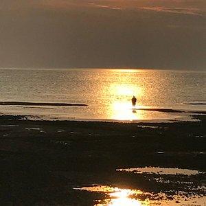 Sandbars and sunsets