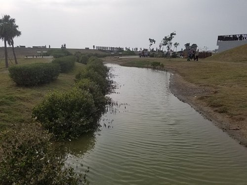 小而巧的濕地公園.园內主要為紅樹林保育区。圆区用主要明星生物有海葵,台湾獨有的倒立水母。今年又出現了多年不見的藍精靈水母,非常值得前往觀賞。