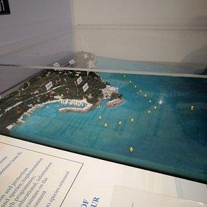 Plastico dell'Area Marina Protetta di Miramare