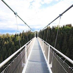 WILDLINE - die Hängebrücke der Superlative!