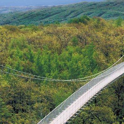 Iconic 420 ft. Suspension Bridge