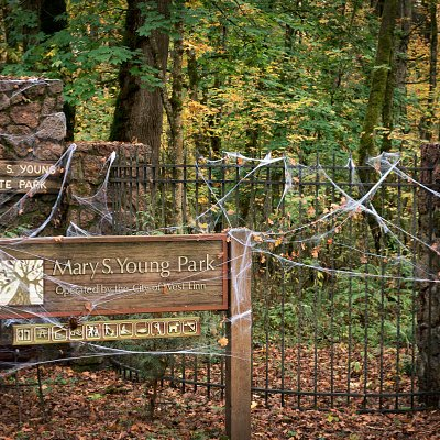 Mary S. Young Haunted Trail